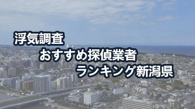 新潟県で確かな証拠を掴む!浮気調査のおすすめ探偵・興信所【動画比較】
